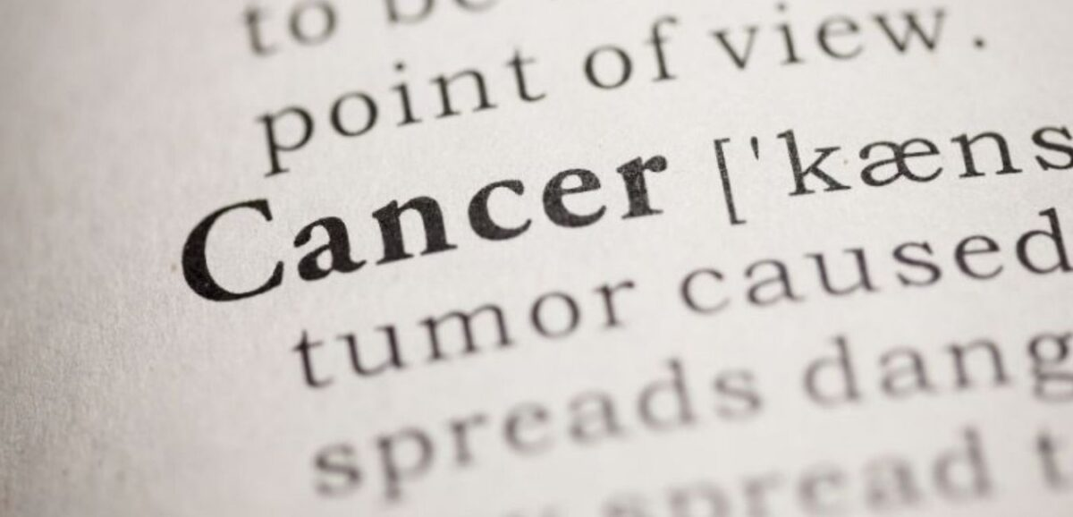 what-are-the-best-foods-to-kill-cancer-cells