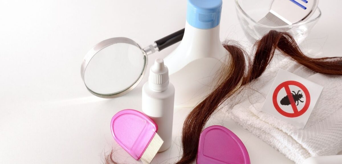 lice--learn-how-to-get-rid-of-them-naturally